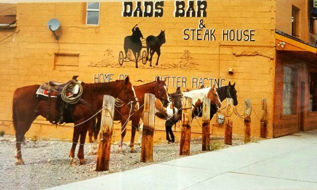 March 5 & 6th Willie Waldman Project feat Memphis Drum Legend Terry Saffold  –  Dad's Bar & Steak House Thayne, WY